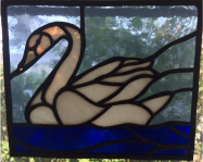 Swangrove-image