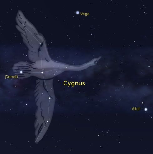 Cygnus-Northern-Cross-Summer-Triangle